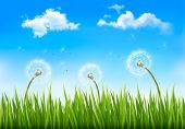 Nature background with dandelions.  Raster version