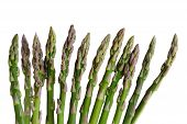 Thin Asparagus Row