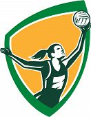 picture of netball  - Illustration of a netball player catching rebounding ball set viewed from the side set inside shield crest on isolated background done in retro style - JPG