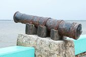 Rustic Old Cannon