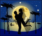 Silhouette Of Bride And Groom Background Of The Full Moon