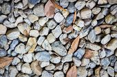 Natural Background Image Of Pebbles In The Park With Dry Leaves