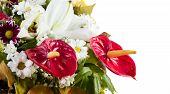 Anthurium Flower Bouquet