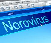 Norovirus Concept.