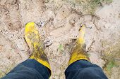Yelkow Muddy Rubber Boots On Wet Silt