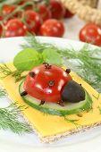 Crispbread With Ladybug