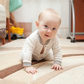 Six Month Old Baby On The Carpet