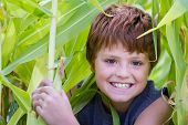 Young Boy Happy With His Corn