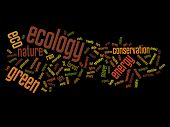 High resolution concept or conceptual abstract green ecology and conservation word cloud text on black background
