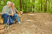 Senior couple with dog sitting in a forest on tree logs