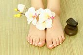 Female feet and flower. Isolated over white background