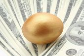 A golden egg on dollars