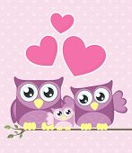 picture of owls  - cute owls couple with baby owl sitting on a branch - JPG