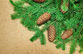 Coniferous Branches And Cones On Wooden Background