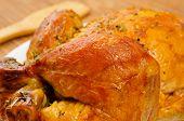 closeup of an appetizing roast turkey