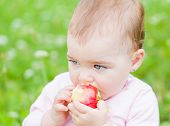 pic of nibbling  - Photo of an adorable baby girl nibble an apple - JPG