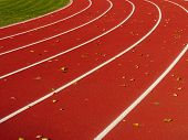 Red Running Track With White Lines