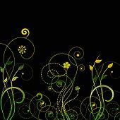 swirls and flora vector