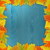 Wood Autumn Vector Background With Leafs