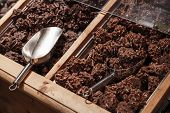 Chocolate With Nuts Lay On Wooden Store Shelves With Metal Scoop
