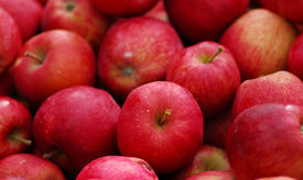 stock photo of cluster  - cluster of farm fresh red delicious apple fruit - JPG