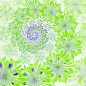 Spiral Flower Background. Green Palette. Computer Generated Graphics.