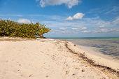 Beach On Cayman Islands