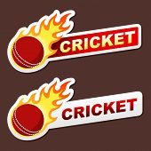 cricket flame sticker banner label tag