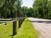 Short Fence Posts With Steel Lines