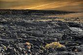 stock photo of canary-islands  - on the coast of volcanic island  - JPG