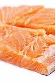 Salmon Filletes