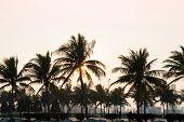 View From Beach On City, Danang, Vietnam
