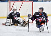 Sledge Hockey Goalkeeper And Defender