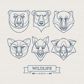 Animals linear art icons. Vector illustration