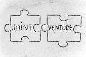 Jigsaw Puzzle With The Words Joint Venture