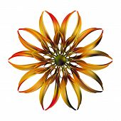 Abstracty Illustration Of Golden Fire Flower