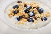 Healthy Breakfast - Yogurt With Blueberries And Muesli Served In A White Bowl