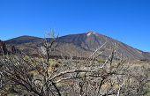 Teide Volcano.