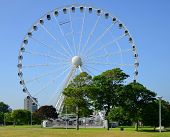 The Big wheel in Plymouth