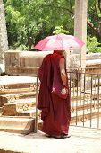 Buddhist Monk With Purple Cloth