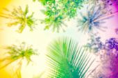 stock photo of hippy  - Hippie rasta style blurred nature background space for text - JPG