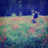 picture of wildflowers  - Woman young backpacking in wildflowers Instagram Style - JPG