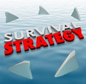 picture of survival  - Survival Strategy 3d words on water surrounded by shark fins to illustrate problem solving and risk reduction so survive danger - JPG