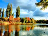 Autum trees reflecting in the lake