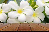 stock photo of frangipani  - Empty Wood Table with White Frangipani Background - JPG
