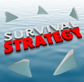 stock photo of dangerous situation  - Survival Strategy 3d words on water surrounded by shark fins to illustrate problem solving and risk reduction so survive danger - JPG