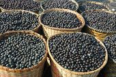 foto of brazilian food  - Acai the small superfruit from the brazilian amazon which is very rich in naturally nutrients and antioxidants - JPG