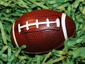 Baby Football - Egg In Grass