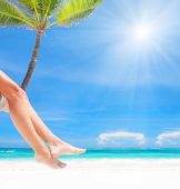 stock photo of woman legs  - Woman on palm on caribbean beach - JPG