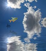 jumping fish under bright sun on blue sky with clouds